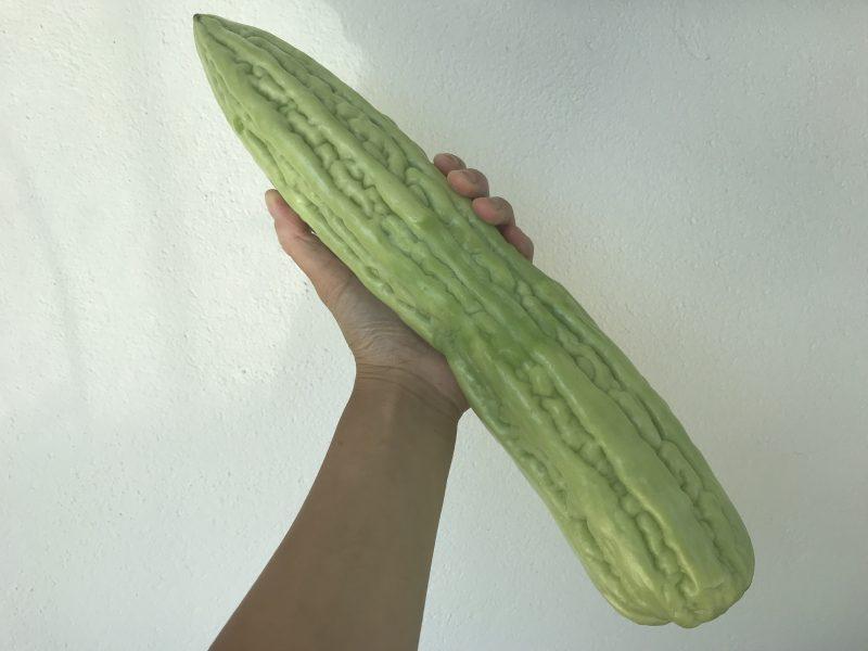 Låt mig presentera: Bittermelonen